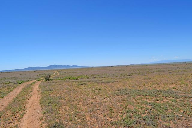 Lot 28 Rio Grande Estates, Rio Communities, NM 87002 (MLS #943706) :: The Bigelow Team / Realty One of New Mexico