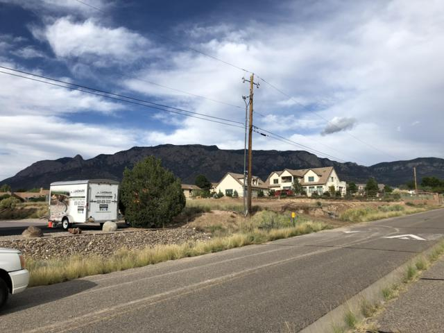 12012 Del Rey Avenue NE, Albuquerque, NM 87122 (MLS #943776) :: The Bigelow Team / Realty One of New Mexico