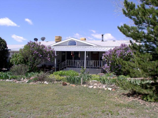16 Teeter (County Road 180) Court, Edgewood, NM 87015 (MLS #943797) :: Campbell & Campbell Real Estate Services