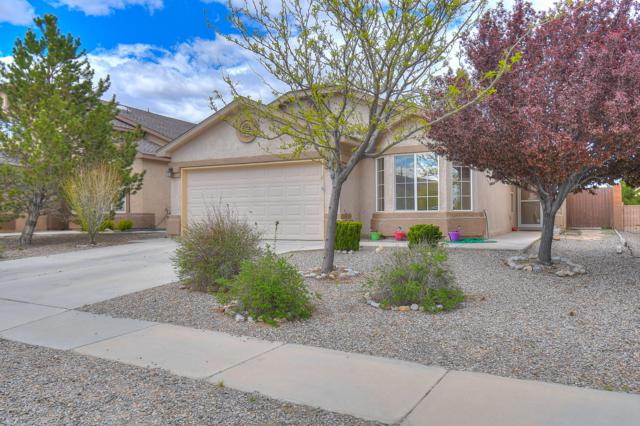 353 Soothing Meadows Drive NE, Rio Rancho, NM 87144 (MLS #943809) :: The Bigelow Team / Realty One of New Mexico