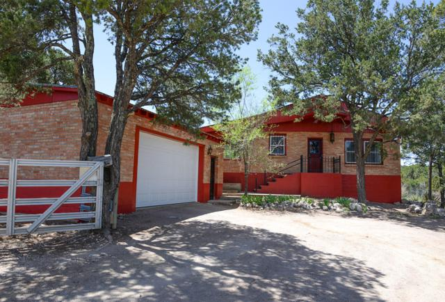 1028 Nm 333, Tijeras, NM 87059 (MLS #943838) :: The Bigelow Team / Red Fox Realty