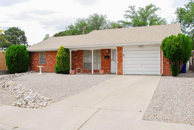 11005 Cordova Avenue NE, Albuquerque, NM 87112 (MLS #943897) :: Silesha & Company