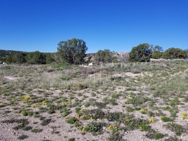 0 Walker Road, Edgewood, NM 87015 (MLS #944034) :: The Bigelow Team / Realty One of New Mexico