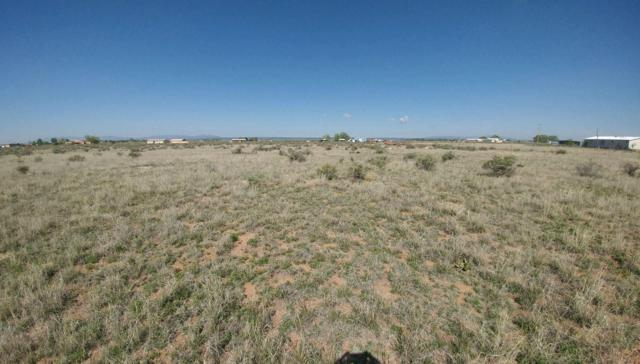 Valle Verde Rd. S, McIntosh, NM 87032 (MLS #944066) :: The Bigelow Team / Red Fox Realty