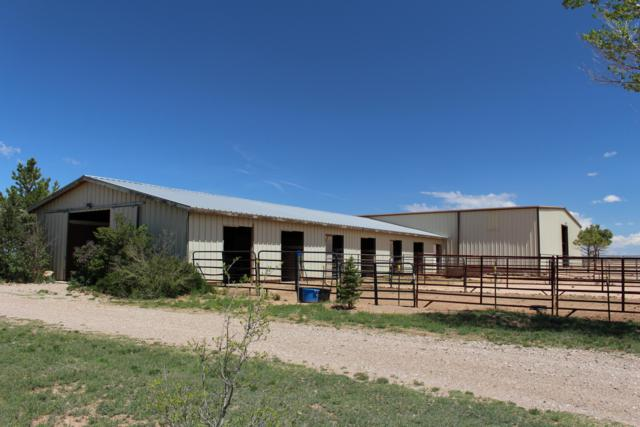 254 Judy Kay Road, Stanley, NM 87056 (MLS #944074) :: The Bigelow Team / Realty One of New Mexico