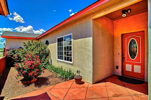 286 Paseo De Gurule Lane, Bernalillo, NM 87004 (MLS #944127) :: Campbell & Campbell Real Estate Services