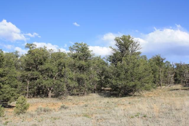 Lot 1 Jubilee Trails, Ramah, NM 87321 (MLS #944224) :: Campbell & Campbell Real Estate Services