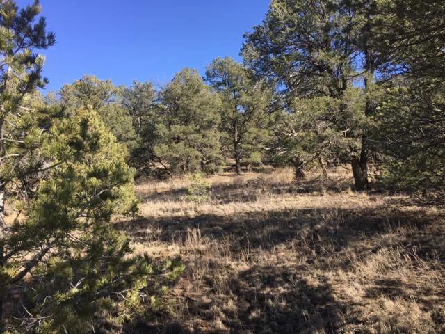 Lot 6 Coyote Canyon, Ramah, NM 87321 (MLS #944235) :: The Buchman Group