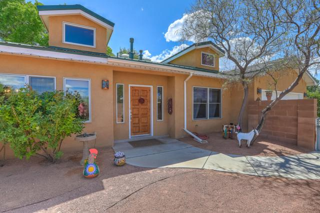 2 Camino Del Sol, Corrales, NM 87048 (MLS #944242) :: The Bigelow Team / Realty One of New Mexico