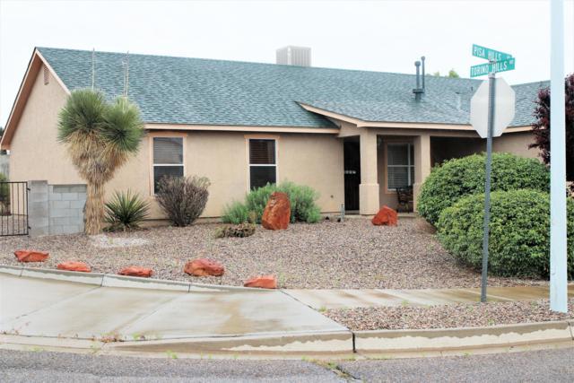 7209 Pisa Hills Road NE, Rio Rancho, NM 87144 (MLS #944273) :: Silesha & Company