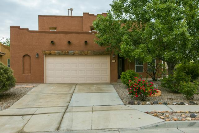 8900 Hallston Trail NW, Albuquerque, NM 87114 (MLS #944334) :: The Bigelow Team / Realty One of New Mexico