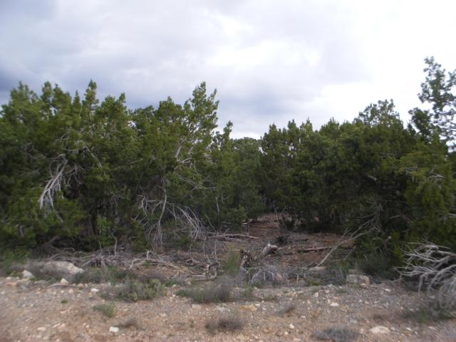 6 Fir Loop, Cedar Crest, NM 87008 (MLS #944348) :: Campbell & Campbell Real Estate Services