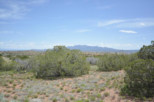 120 Diamond Tail Road, Placitas, NM 87043 (MLS #944411) :: Campbell & Campbell Real Estate Services