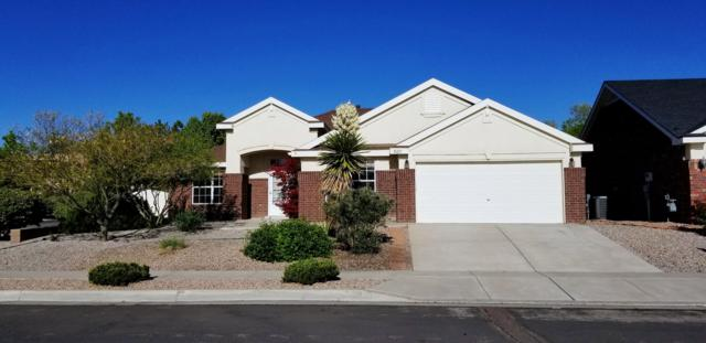 10223 Wickenburg Street NW, Albuquerque, NM 87114 (MLS #944553) :: The Bigelow Team / Realty One of New Mexico