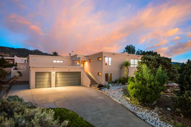 10 Juniper Hill Road NE, Albuquerque, NM 87122 (MLS #944599) :: The Bigelow Team / Realty One of New Mexico