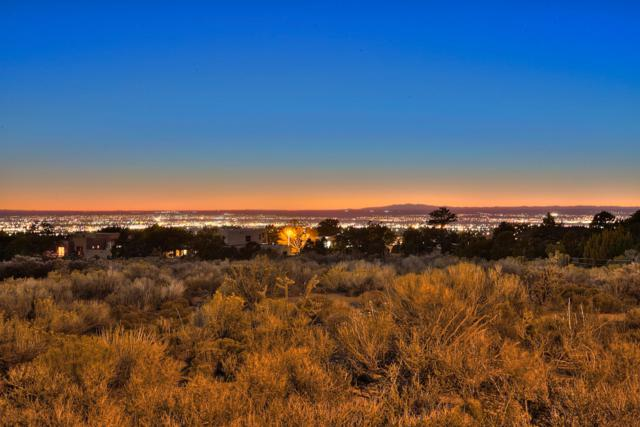 4915 Cresta Del Sur Court NE, Albuquerque, NM 87111 (MLS #944744) :: The Buchman Group