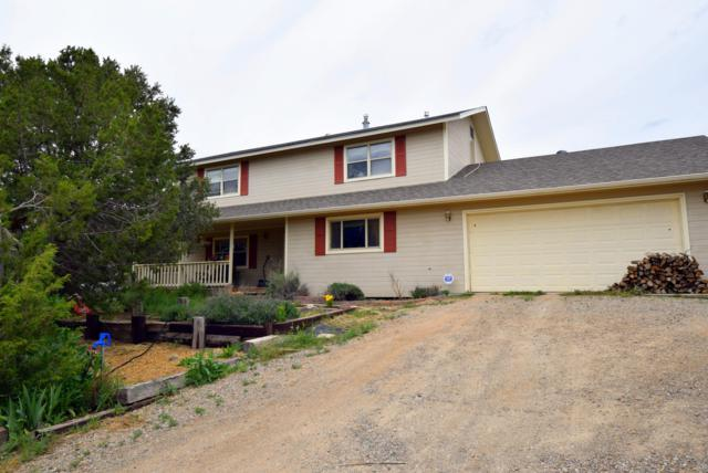 38 Wildlife Trail, Edgewood, NM 87015 (MLS #944761) :: Silesha & Company