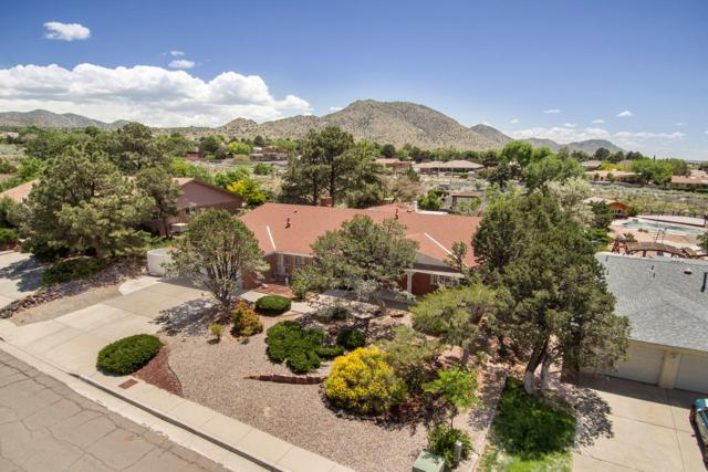 1312 Cuatro Cerros Trail SE, Albuquerque, NM 87123 (MLS #944823) :: The Bigelow Team / Realty One of New Mexico