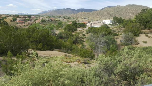 13705 Winterwood Way SE, Albuquerque, NM 87123 (MLS #944859) :: The Bigelow Team / Realty One of New Mexico