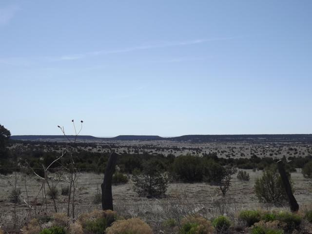 66 Gallegos Road, Tijeras, NM 87059 (MLS #944973) :: The Bigelow Team / Realty One of New Mexico