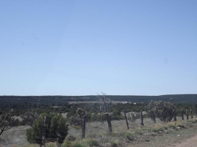 66 B Gallegos Road, Tijeras, NM 87059 (MLS #944974) :: The Bigelow Team / Realty One of New Mexico