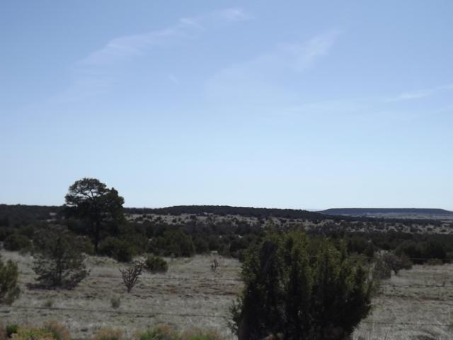Gallegos Road, Tijeras, NM 87059 (MLS #944976) :: The Bigelow Team / Realty One of New Mexico