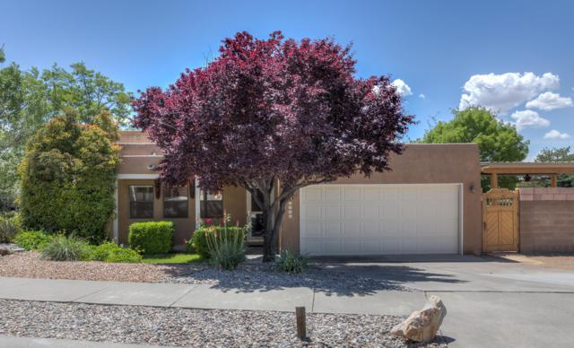 10433 Oso Grande Road NE, Albuquerque, NM 87111 (MLS #944995) :: The Bigelow Team / Realty One of New Mexico