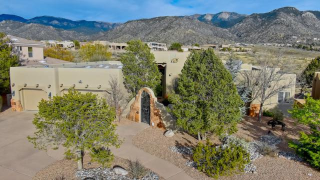 5408 Cortaderia Place NE, Albuquerque, NM 87111 (MLS #945041) :: The Bigelow Team / Realty One of New Mexico