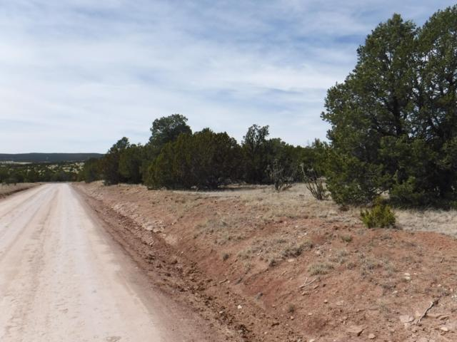 0 Magic Mist Road, Moriarty, NM 87035 (MLS #945065) :: Campbell & Campbell Real Estate Services
