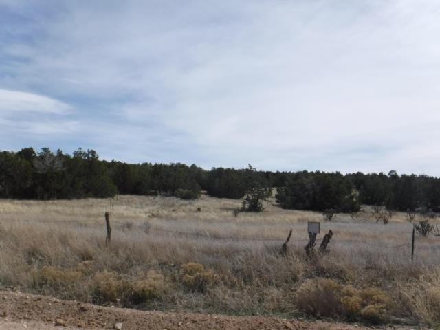 0 Martinez Road, Edgewood, NM 87015 (MLS #945066) :: Campbell & Campbell Real Estate Services