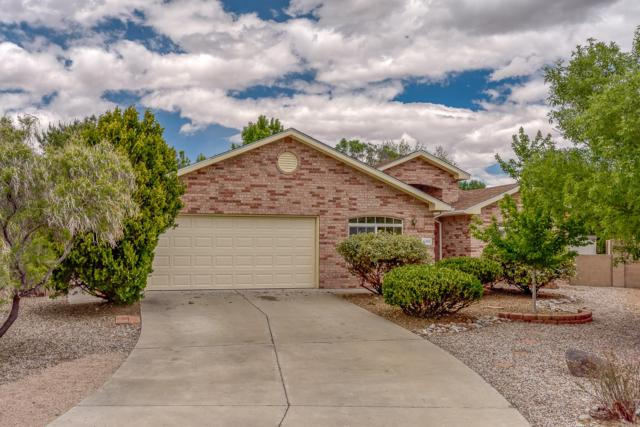 6901 Luz De La Luna Place NW, Albuquerque, NM 87114 (MLS #945138) :: The Bigelow Team / Realty One of New Mexico