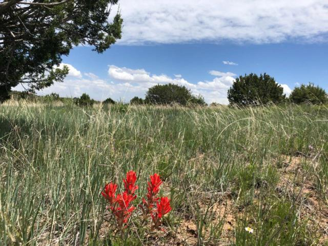 220 Hill Ranch Road, Edgewood, NM 87015 (MLS #945209) :: Campbell & Campbell Real Estate Services