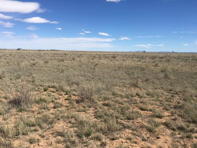 Ice Plant Road, McIntosh, NM 87032 (MLS #945226) :: The Bigelow Team / Red Fox Realty