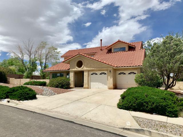 4313 Condesa Drive NW, Albuquerque, NM 87114 (MLS #945284) :: Silesha & Company