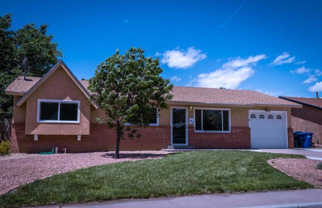 1613 Erbbe Street NE, Albuquerque, NM 87112 (MLS #945317) :: Silesha & Company
