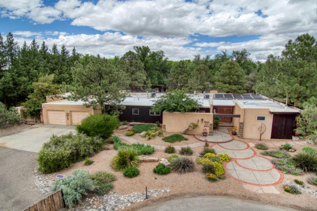 17 Applewood Lane NW, Los Ranchos, NM 87107 (MLS #945319) :: The Bigelow Team / Realty One of New Mexico