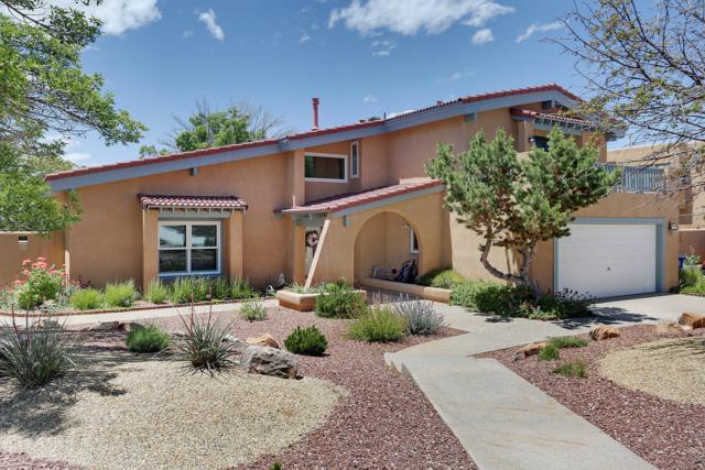 1331 Camino Cerrito SE, Albuquerque, NM 87123 (MLS #945332) :: The Bigelow Team / Realty One of New Mexico