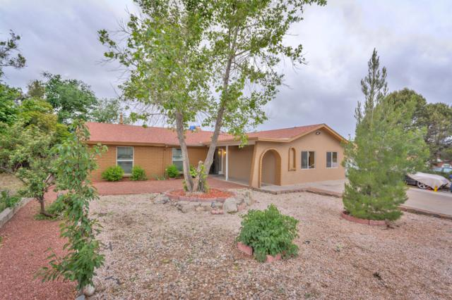 11704 Tracy Court NE, Albuquerque, NM 87111 (MLS #945336) :: Campbell & Campbell Real Estate Services