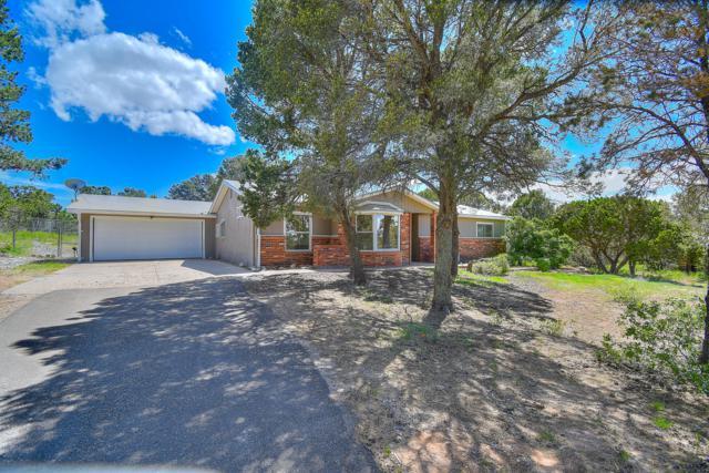 31 Willard Road, Edgewood, NM 87015 (MLS #945367) :: The Bigelow Team / Realty One of New Mexico