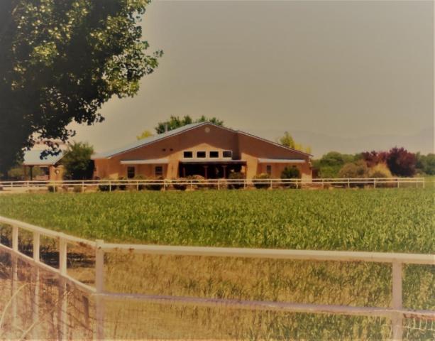 31 Vallejos Road, Los Lunas, NM 87031 (MLS #945379) :: Campbell & Campbell Real Estate Services