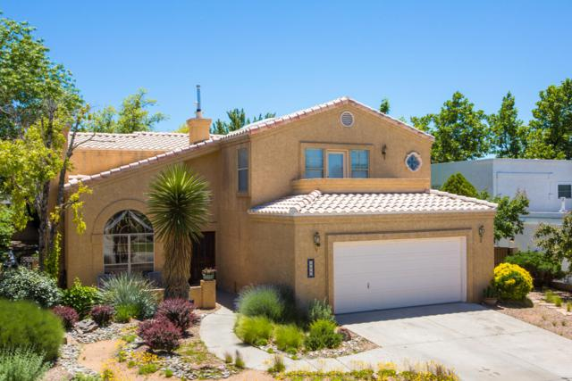 9616 Rosas Avenue NE, Albuquerque, NM 87109 (MLS #945388) :: The Bigelow Team / Realty One of New Mexico