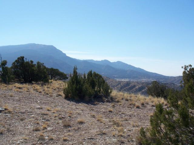 Camino Halcon - 2.5 Acres, Placitas, NM 87043 (MLS #945410) :: Campbell & Campbell Real Estate Services