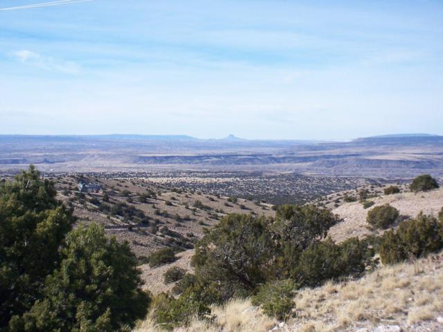 Camino Halcon - 5 Acres, Placitas, NM 87043 (MLS #945411) :: Berkshire Hathaway HomeServices Santa Fe Real Estate
