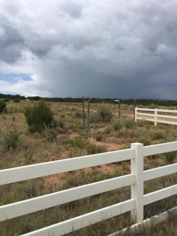 Sedillo Rd., Edgewood, NM 87015 (MLS #945441) :: Campbell & Campbell Real Estate Services