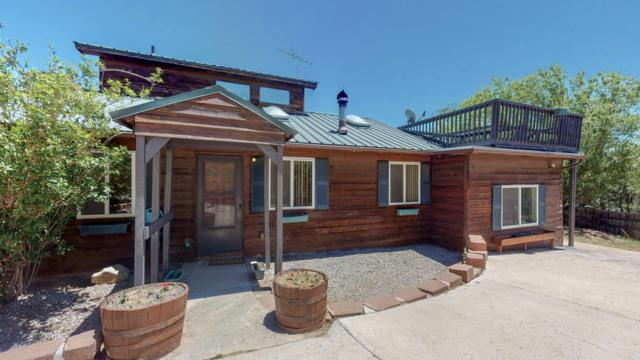 20 Fir Loop, Cedar Crest, NM 87008 (MLS #945575) :: Campbell & Campbell Real Estate Services