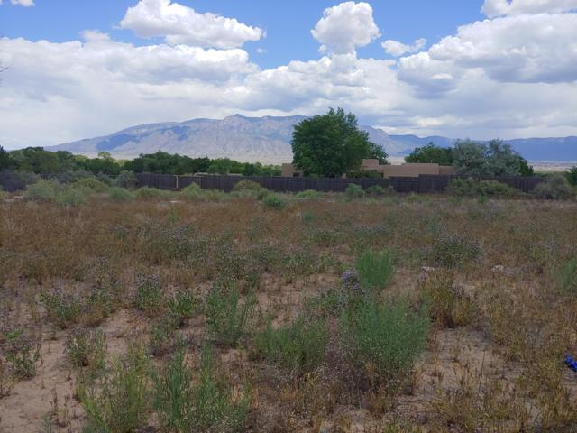Lot 6 Reclining Acres Road, Corrales, NM 87048 (MLS #945670) :: Campbell & Campbell Real Estate Services