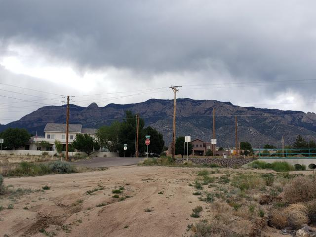 Alameda Boulevard NE, Albuquerque, NM 87122 (MLS #945678) :: Campbell & Campbell Real Estate Services