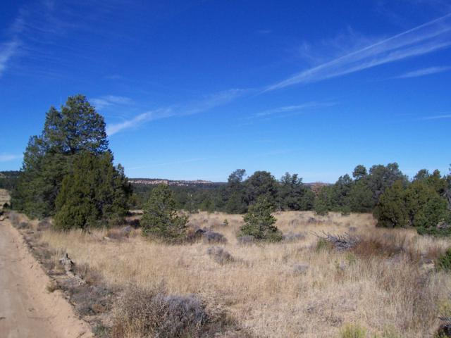 Lot 22 Bucking Horse - Candy Kitchen, Ramah, NM 87321 (MLS #945686) :: Sandi Pressley Team