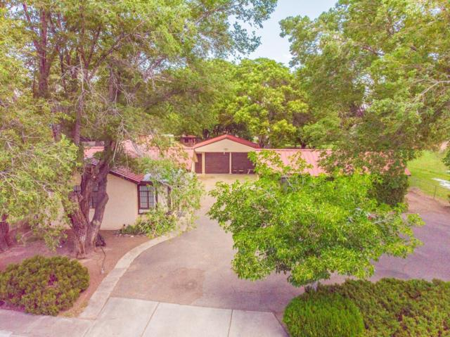 2929 Floral Road NW, Albuquerque, NM 87104 (MLS #945771) :: The Bigelow Team / Red Fox Realty