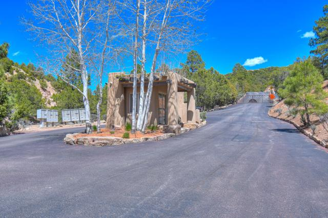 1069 Summit Drive, Santa Fe, NM 87501 (MLS #945774) :: Silesha & Company